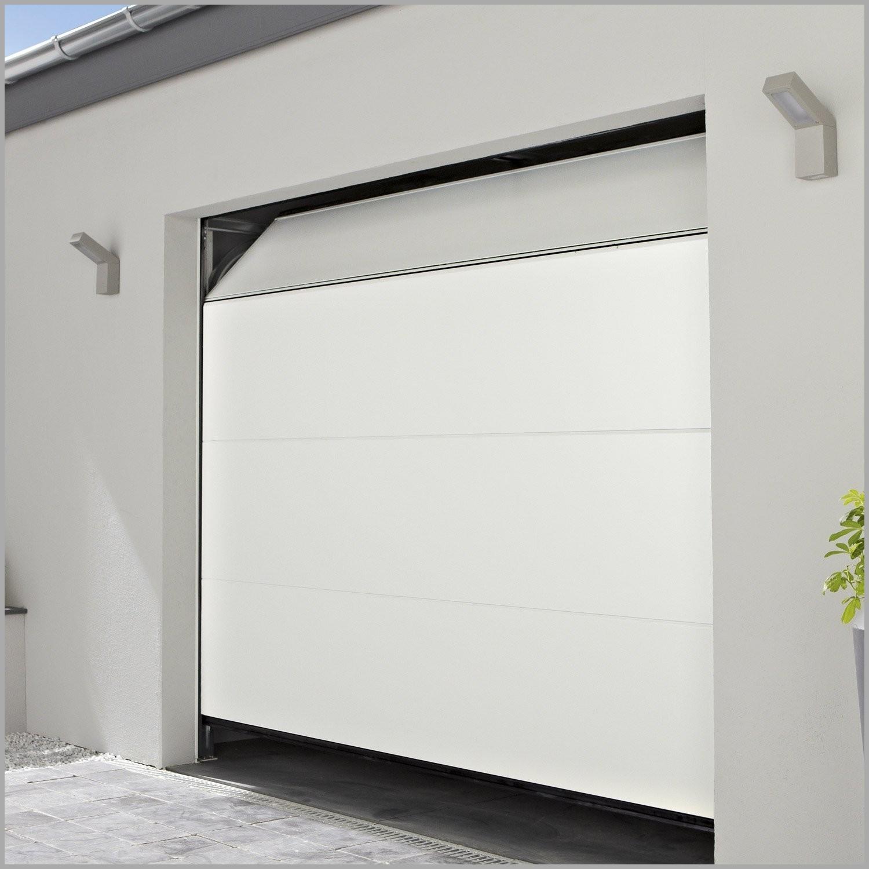 hublot porte de garage lapeyre id es de travaux. Black Bedroom Furniture Sets. Home Design Ideas