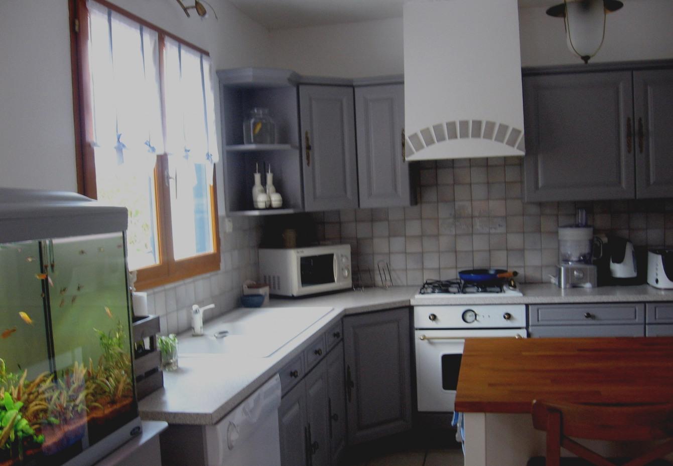 peinture gris souris pour meuble de cuisine id es de travaux. Black Bedroom Furniture Sets. Home Design Ideas