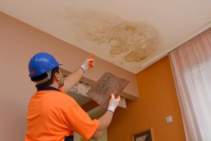 Devis peinture plafond cuisine - Idées de travaux