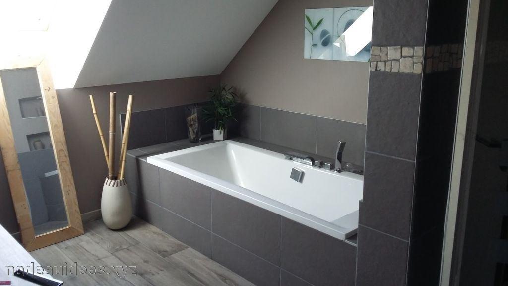 Idee peinture carrelage salle de bain - Idées de travaux