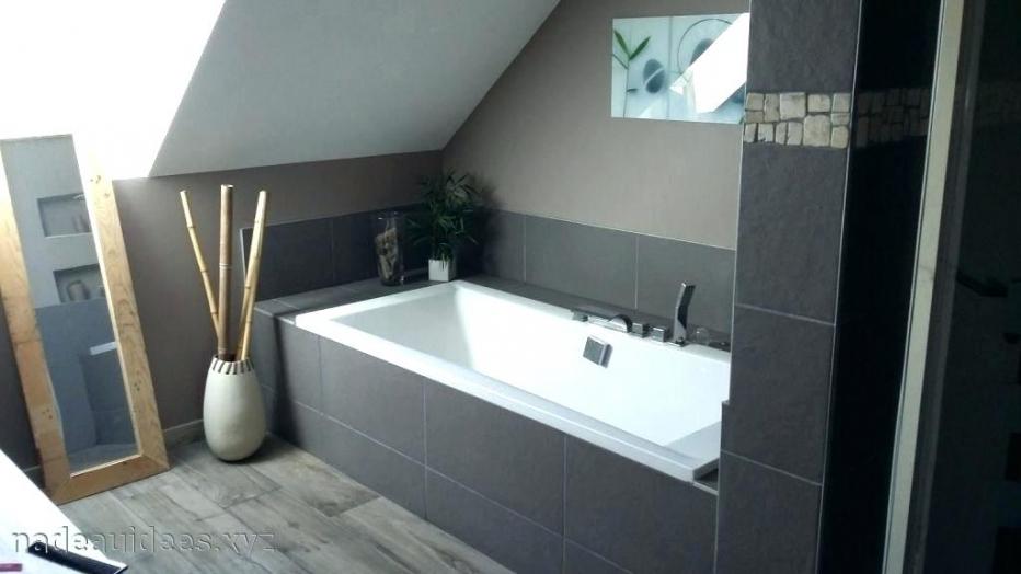 Peinture ou carrelage dans la salle de bain - Idées de travaux