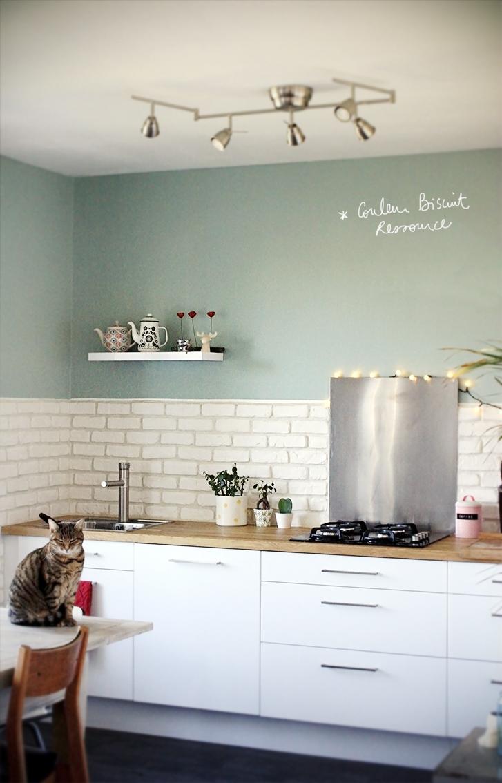 Peinture vert d'eau pour cuisine - Idées de travaux