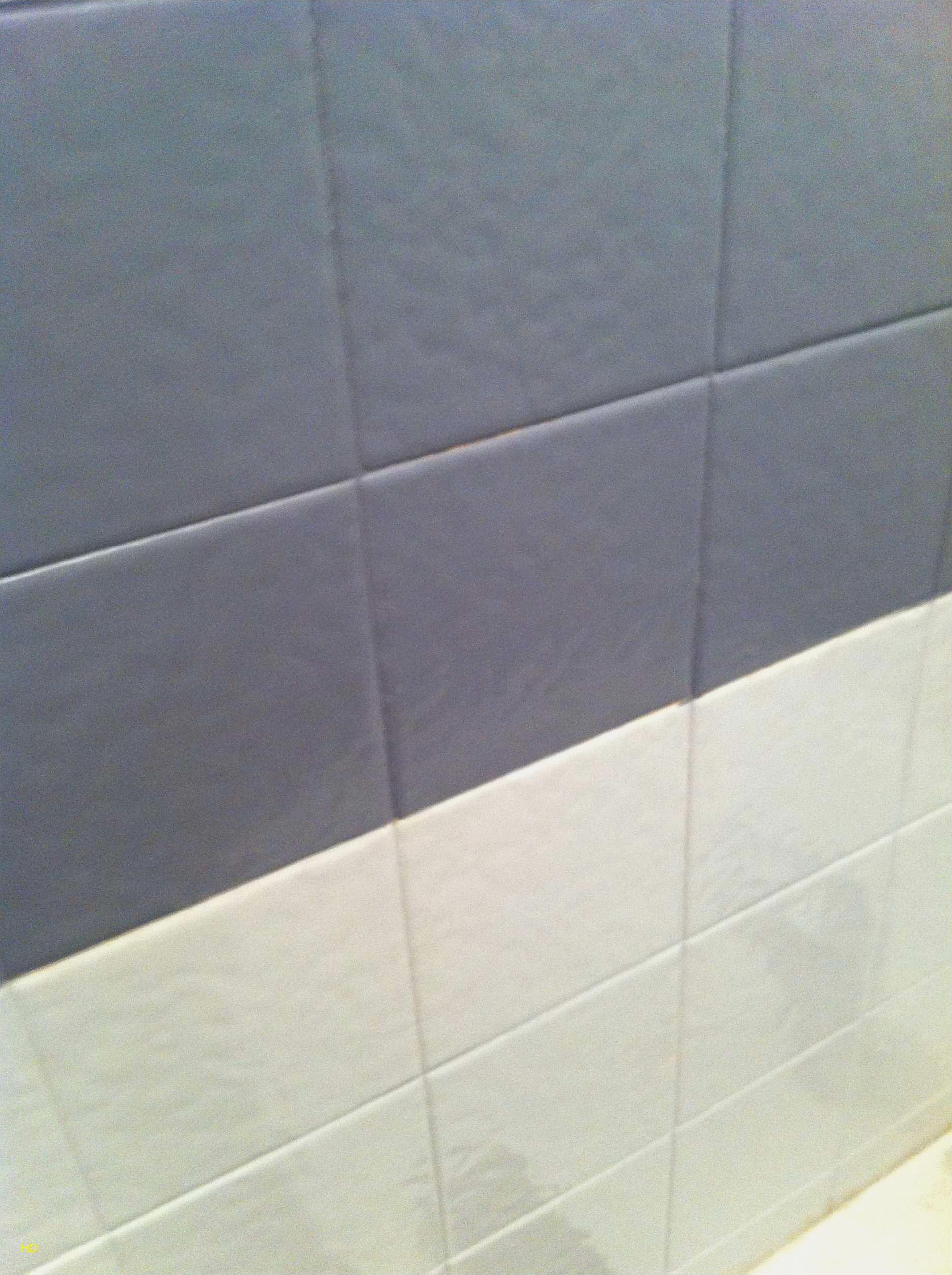 Peinture carrelage douche resinence - Idées de travaux