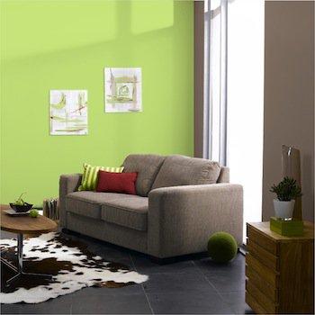 decoration peinture salon vert id es de travaux. Black Bedroom Furniture Sets. Home Design Ideas